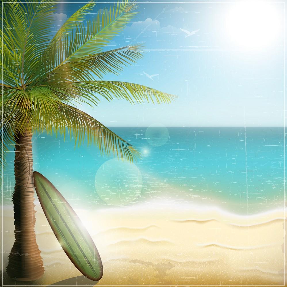 Background biển và cây dừa