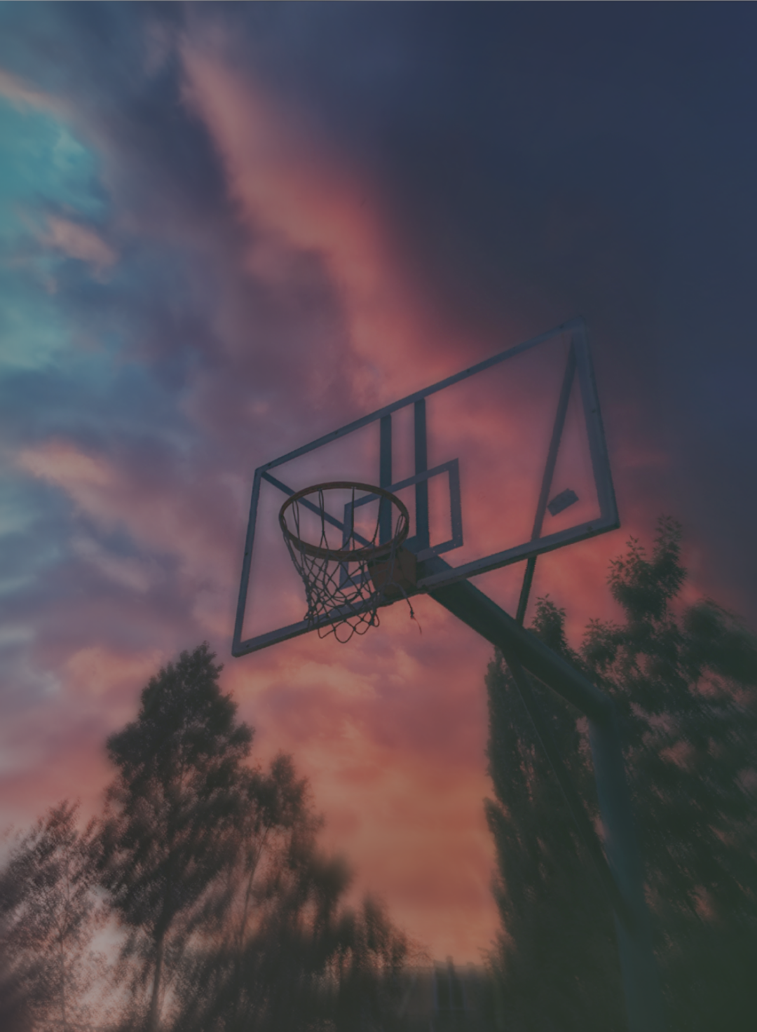 Ảnh chơi bóng rổ đẹp nhất