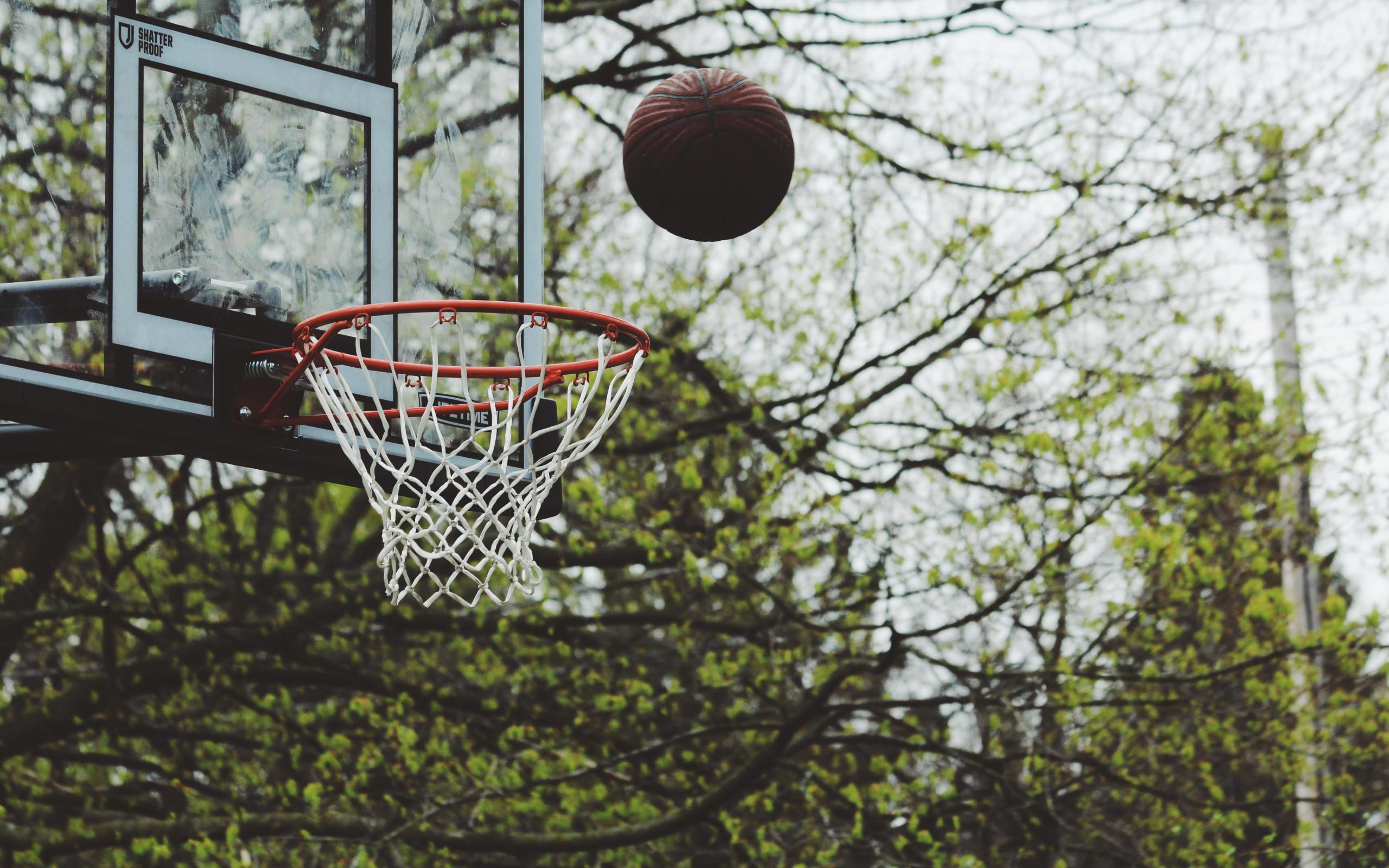 Hình ảnh bóng rổ đẹp, thơ mộng