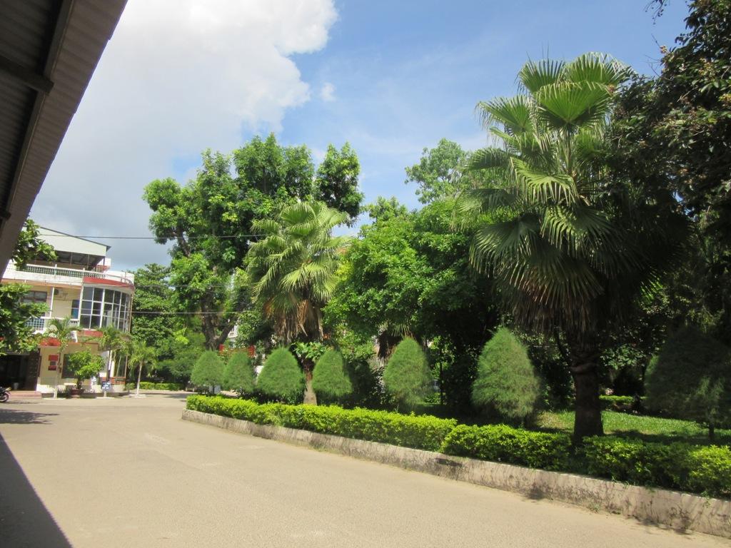 Hình ảnh cây xanh trong khuôn viên bệnh viện