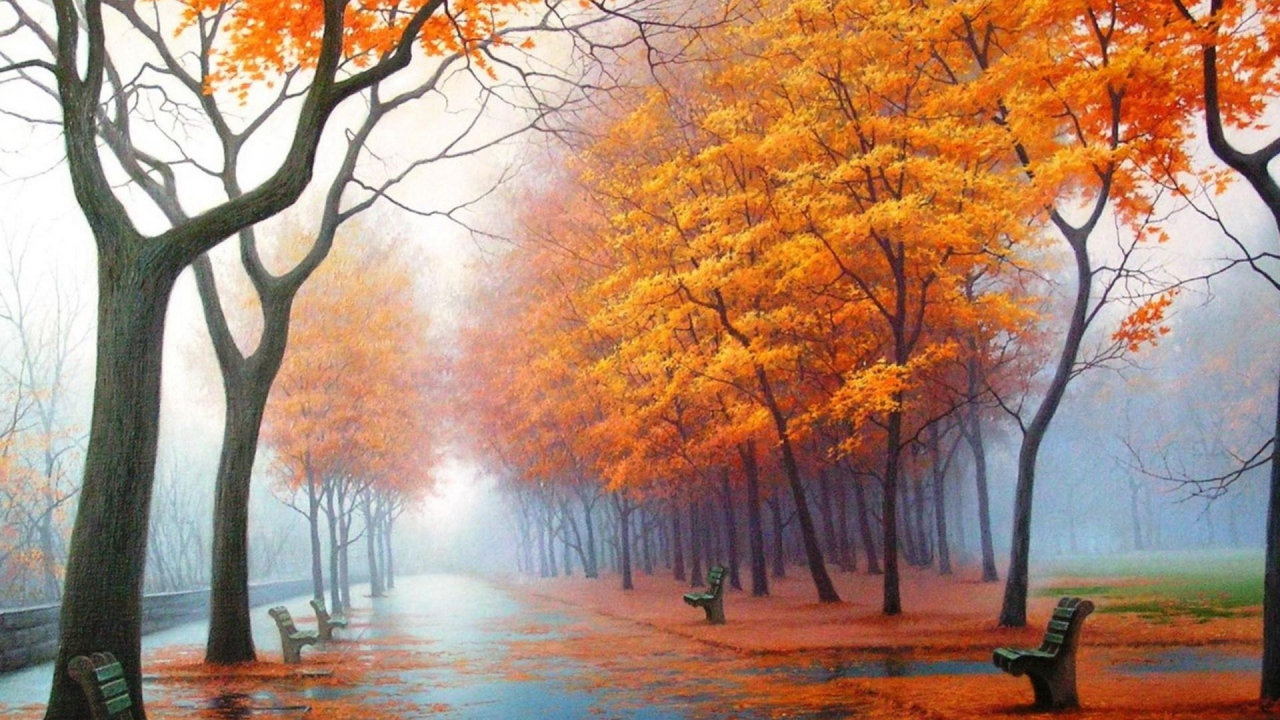 Hình ảnh xanh mùa thay lá