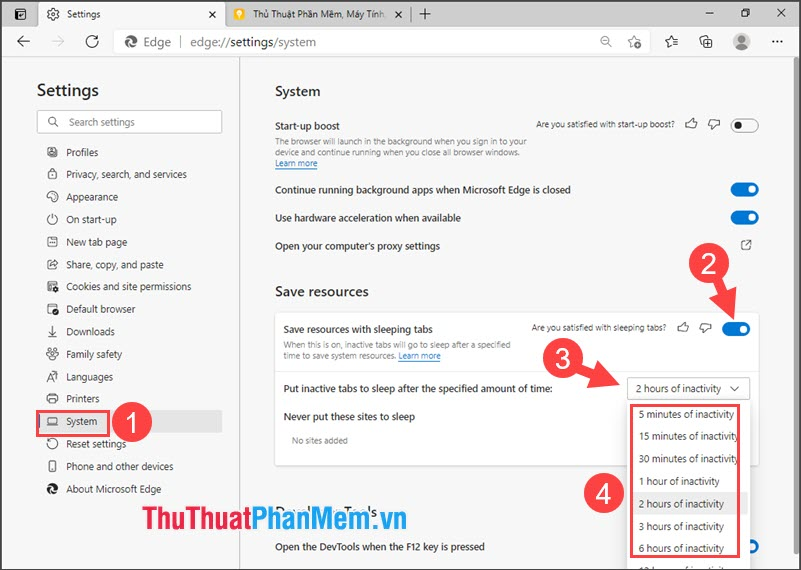 Click vào tuỳ chọn Put inactive tabs to sleep after the specific amount of time