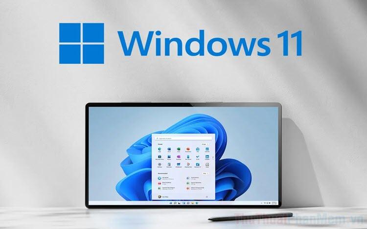 Cách luôn hiển thị thanh cuộn trang trên Windows 11