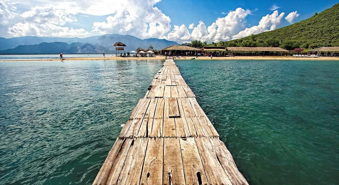 Hình ảnh cầu gỗ đảo Điệp Sơn