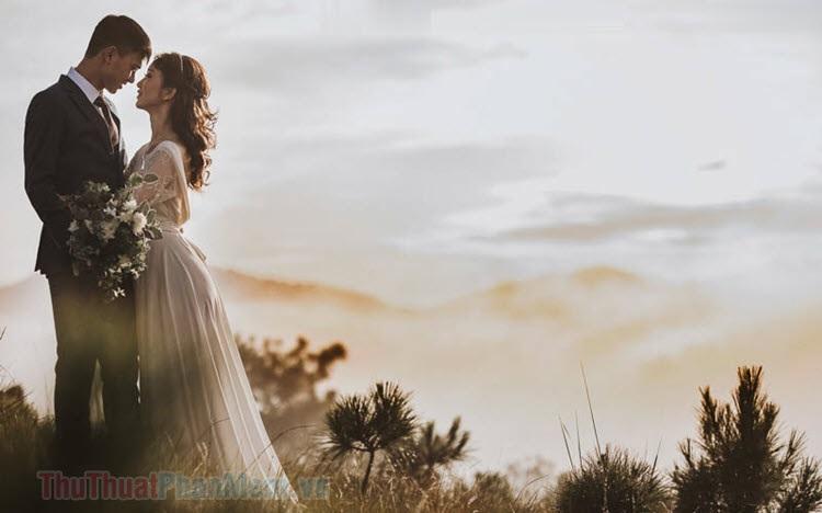 Stt đám cưới, status hay về đám cưới