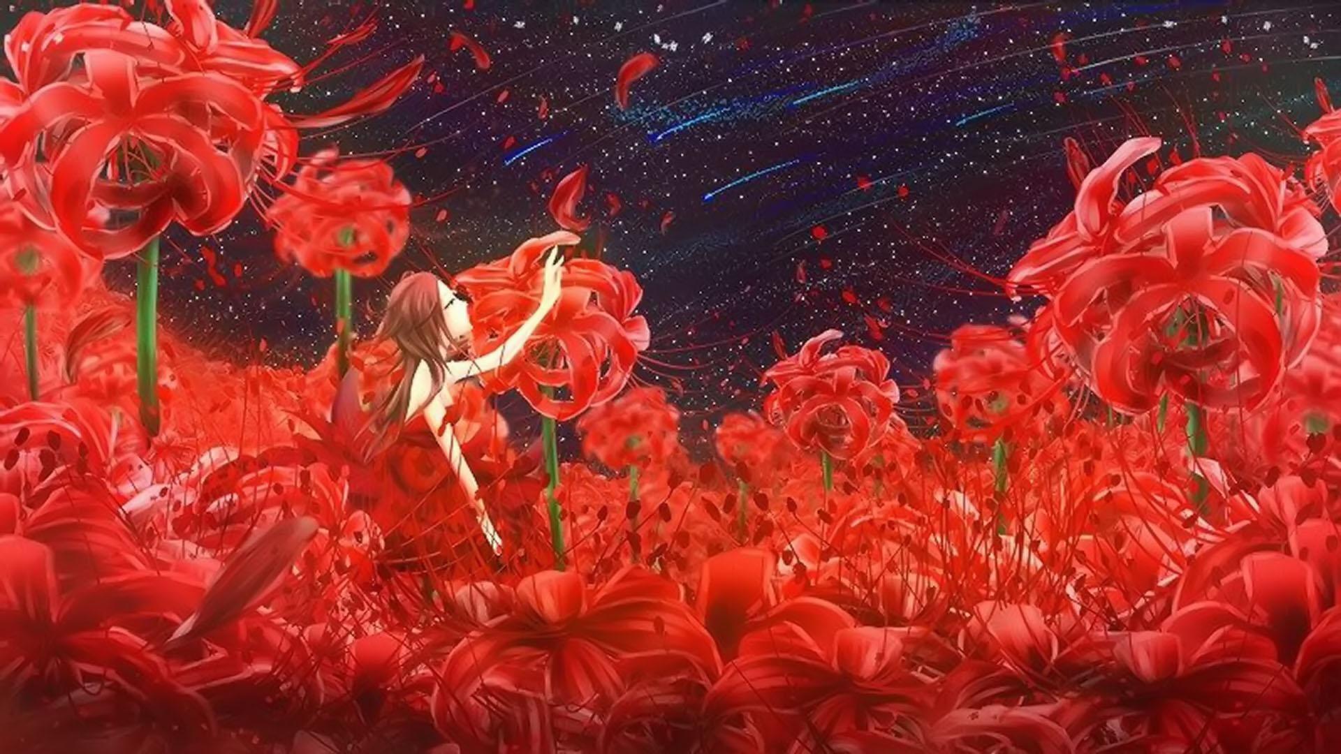Hình nền hoa Bỉ Ngạn hoạt hình