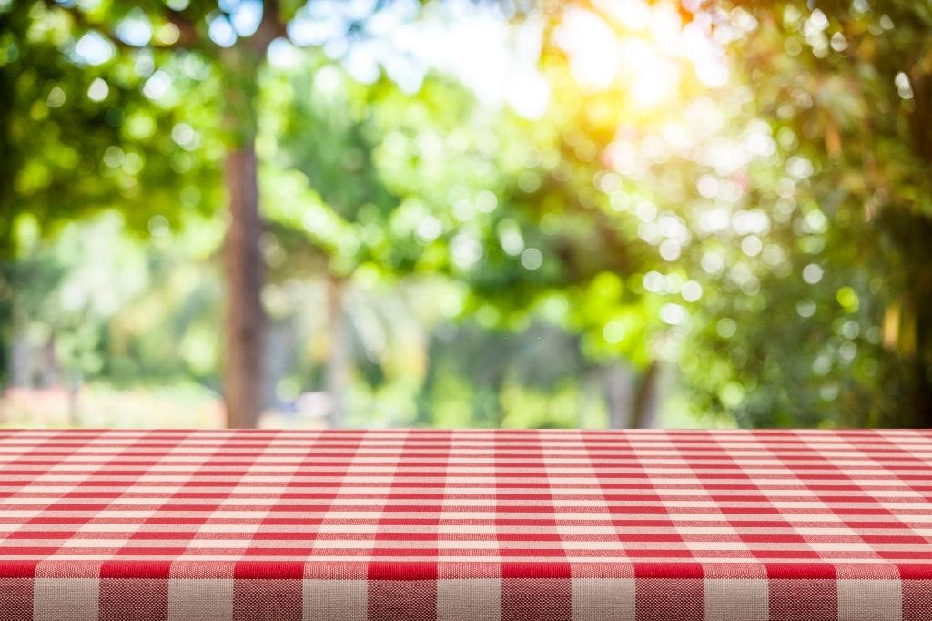 Mẫu background picnic mùa hè