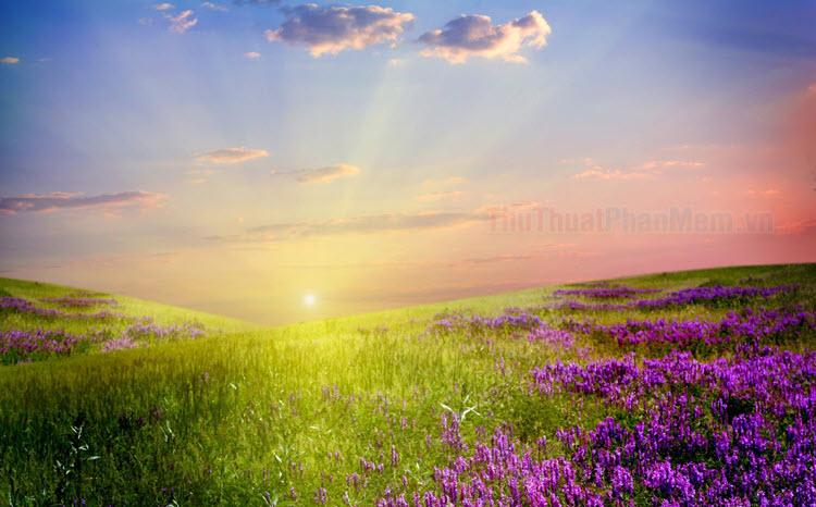 Những câu nói hay về ngày mới - Stt, status ngày mới tràn đầy năng lượng, sảng khoái